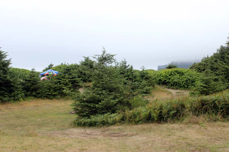Hobuck Beach Camping Area 2